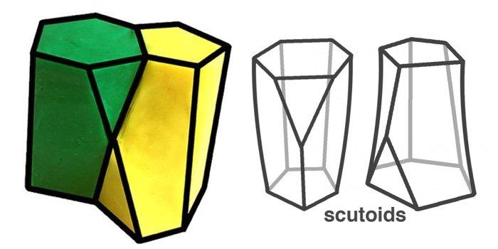 yeni geometrik şekil scutoid