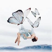kelebek etkisi ve eğitim